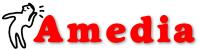 Amedia 集团公司